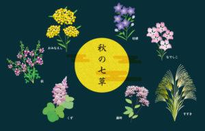 秋の七草のおぼえ方